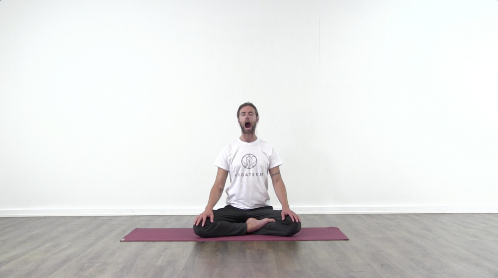 Yoga for the Face_0