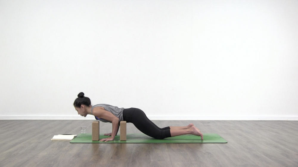 Chaturanga Dandasana Take Two_0