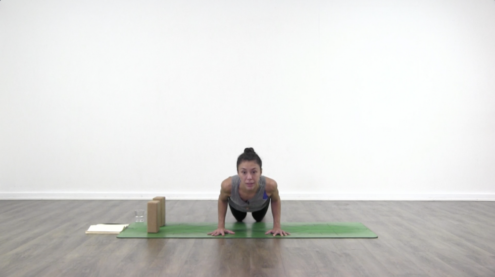 Chaturanga Dandasana Take Two_1