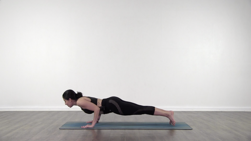 Plank to Chaturanga_1