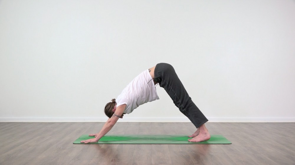 Find Your Downward Dog Shoulders_0