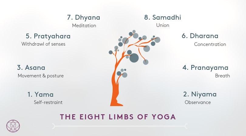 The 8 Limbs Of Yoga Explained - Yoga Lingo at YOGATEKET