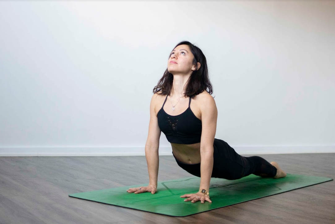 Urdhva Mukha Svanasana - Upward-Facing Dog Pose
