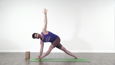 screenshot from online yoga class with Daniel Scott at Yogateket yoga studion in Uppsala sweden