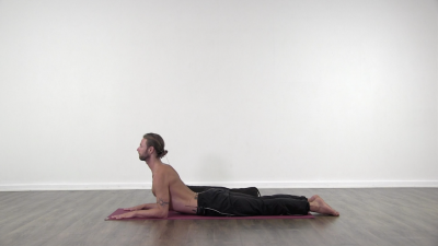 cobra pose hatha yoga