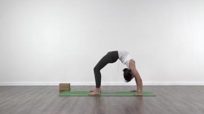 ashtanga fundamentals program  yogateket
