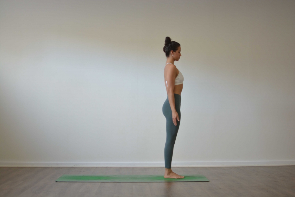 Samasthiti (Same Stance)  Exhale - Gaze at the tip of the Nose (Rechaka/Nasagra Drishti)