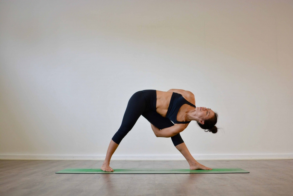 Bound Triangle Pose